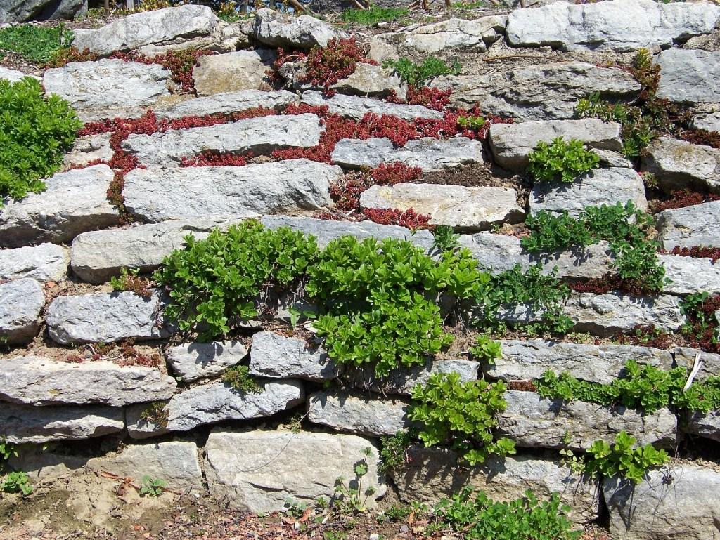 Stone Wall Idea