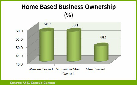 Bareau of census basic house cleaning franchise ownership data