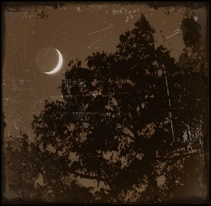 Antique style of Crescent Moon