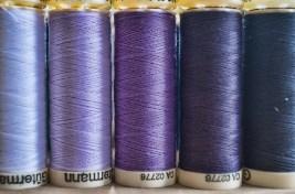 Purple, Purple, Purple ©Sharon Popek