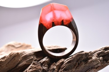 Still life photo of a ring with a tiny red landscape inside.