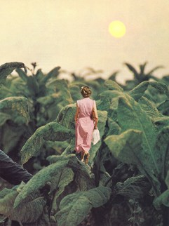 Tiny woman waling through giant plants.