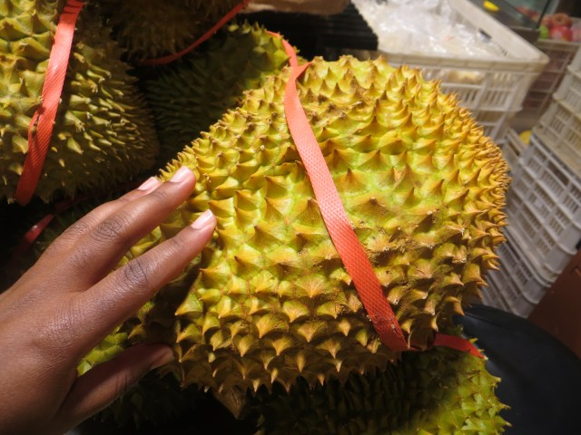 As I mentioned in my Thailand post, Durian has a prickly outside and a custardy inside, November 19, 2016