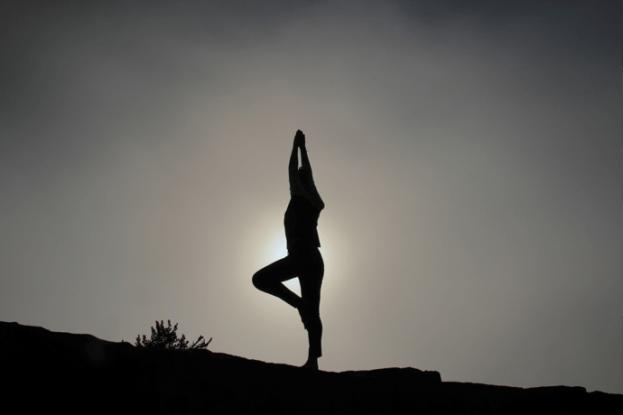 Yoga: Pose - Purpose Driven Mastery