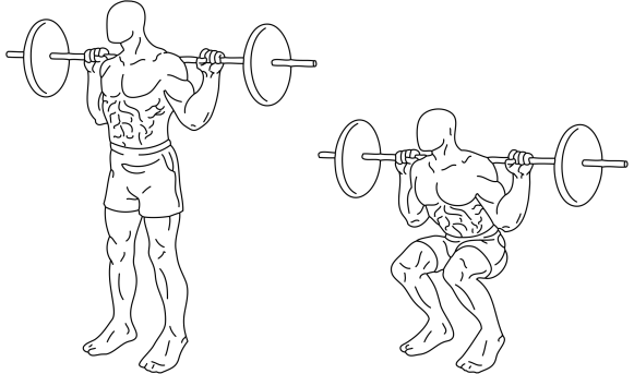 Weightlifting: Squats - Purpose Driven Mastery