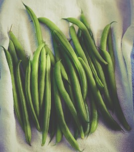 Fiber: Green Beans - Purpose Driven Mastery