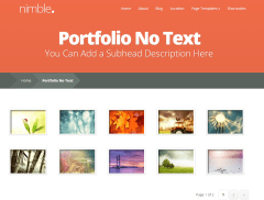 Nimble- Portfolio with no text is another layout of this theme