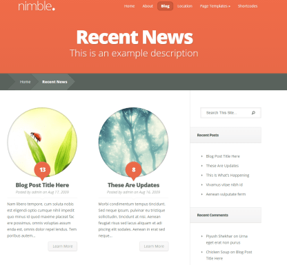Nimble- Trendy blog page layout of this theme