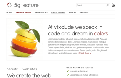 BigFeature- Another front page layout of this theme