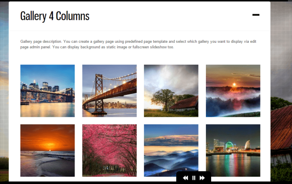 DK- It supports gallery with 2-4 column grid view