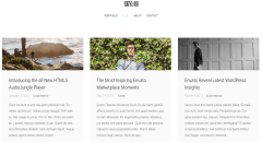Skylab- Blog page developed using Skylab theme
