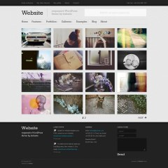 Website- Gallery Page created using Website Theme