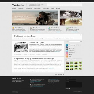 Website- Popular Responsive WordPress theme