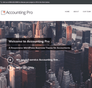 Accounting Pro- A responsive WP theme for Accountants