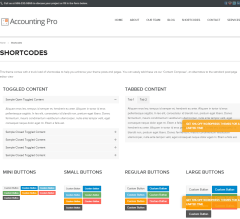 Accounting Pro- Some shortcodes are shown here