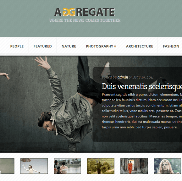 Agreegate- A Magazine and Blogging WP Theme
