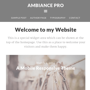 Ambiance Pro WordPress Theme