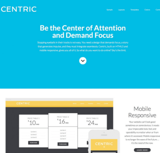 Centric Pro - Business child WordPress theme