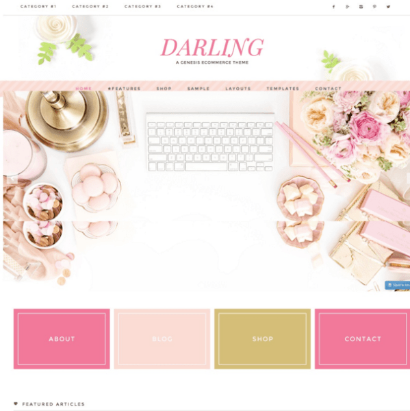 Darling Theme – Beautiful Ecommerce WordPress theme.