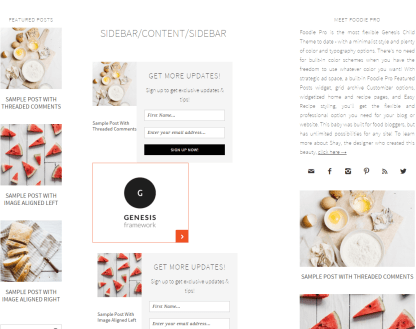 Foodie Pro- sidebar-sidebar-content page layout of this theme