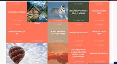 Grid gallery of Shape theme