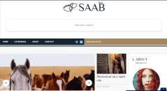 Homepage of Saab theme