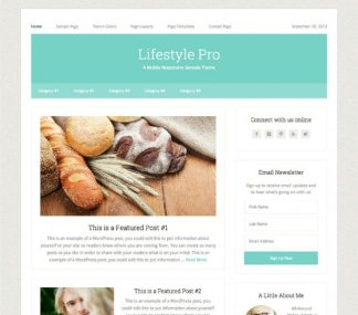 Lifestyle Pro- WordPress theme for content focussing Blog