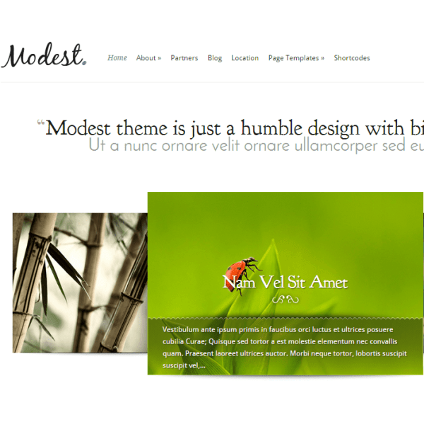 Modest- Subtle WordPress theme for corporate and business sites