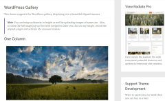 Radiate Gallery Page