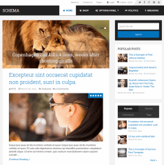 Schema-WordPress-theme