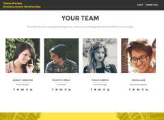 Team-WordPress-Theme-Development