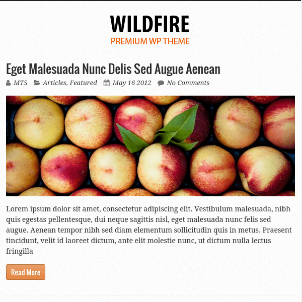 WildFire WordPress Theme