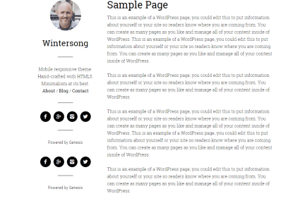 Wintersong Pro theme showing sample page