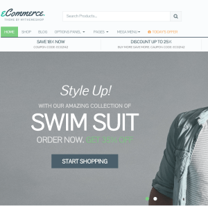 eCommerce- An online shopping WordPress Theme