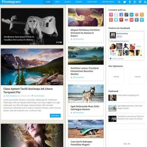 pinstagram-wordpress-theme