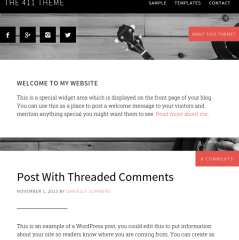 411-Pro-WordPress-Themes