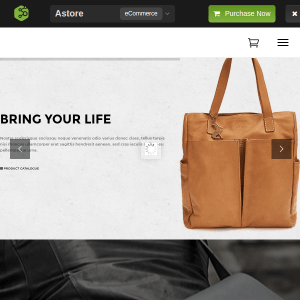 Astore - Responsive WooCommerce WordPress Theme