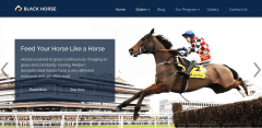 BlackHorse Home Page