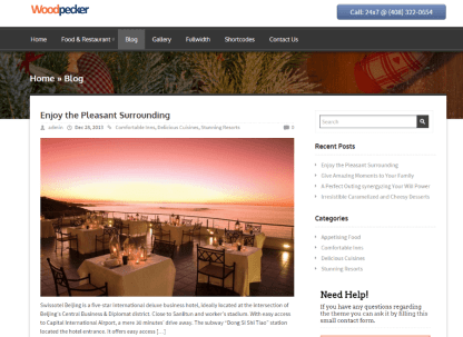 Blog page of WoodPecker theme