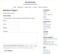Bluesand- Enquiry page