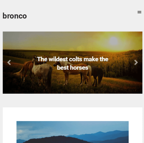 Bronco- A Blogging WordPress theme