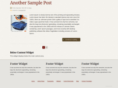 Element Footer