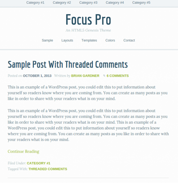Focus-Pro-WordPress-theme