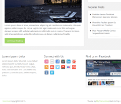Footer-WordPress-Nominal-theme