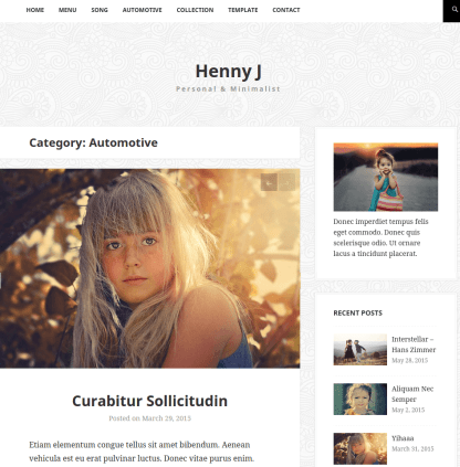 Hennyj-Wordpress-category