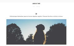 NRGblog About Page