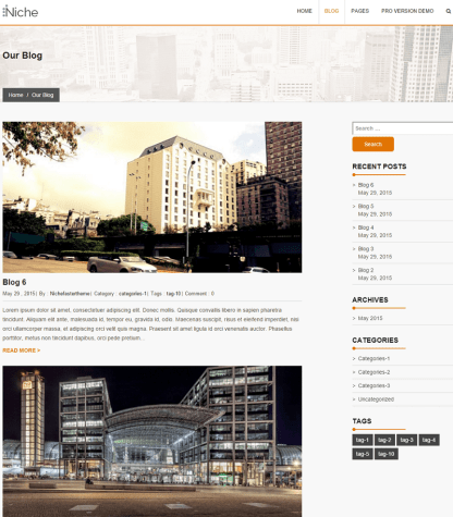 Niche- Blog page of this theme has classic layout