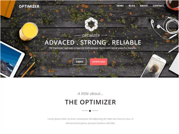 Optimizer Landing page theme