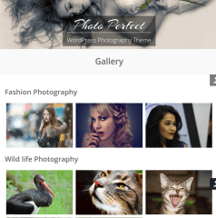 Photo-pefect-WordPress