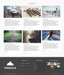 Pinnacle-Footer-Widget